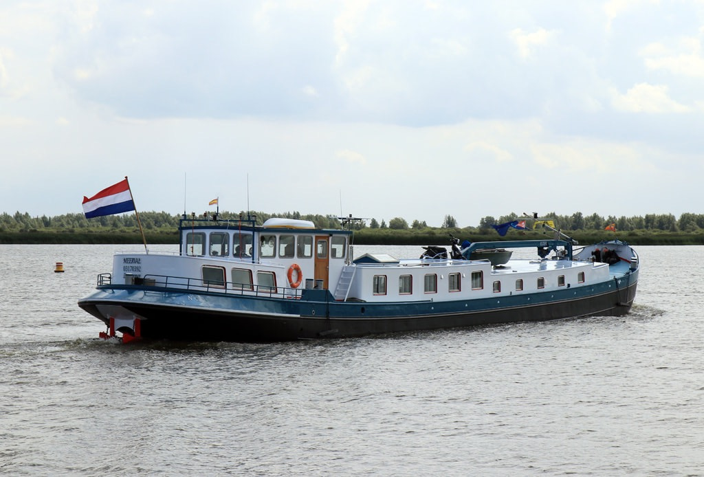 Lauwersoog Meerval